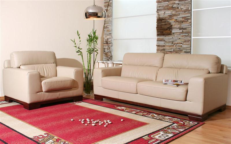 Ruang-Tamu-Sederhana-Dengan-Sofa-Tamu-Minimalis-dan-Karpet-Ruang-Tamu-Merah (Medium)