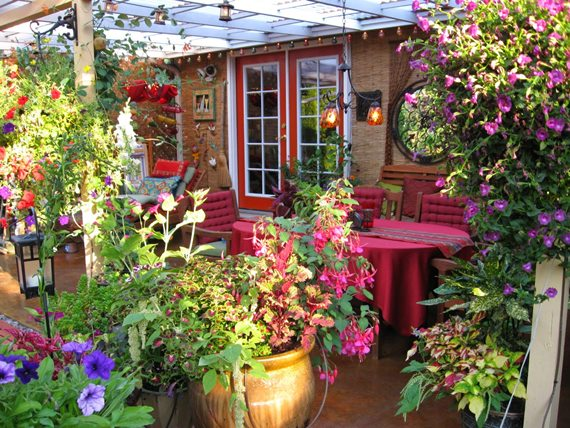 halaman depan rumah penuh bunga